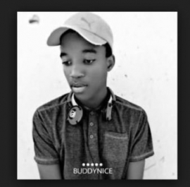 Buddynice - The Layabouts ft. Portia  Monique-colours of love (Redemial Mix)